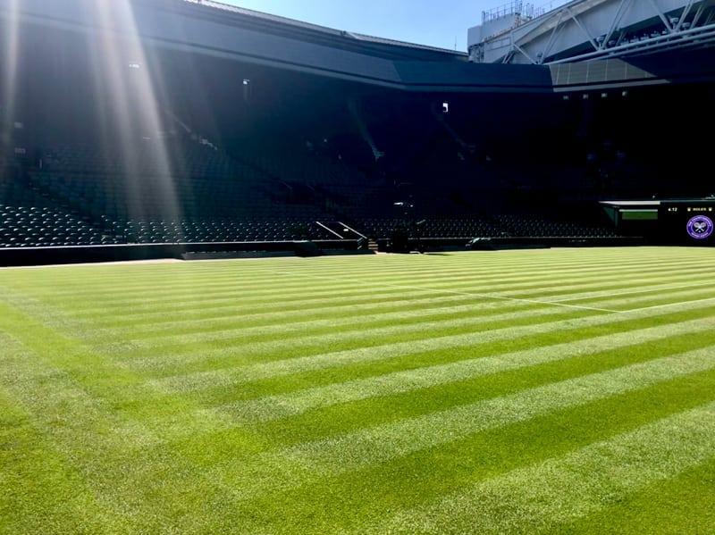 Wimbledon grass tennis court